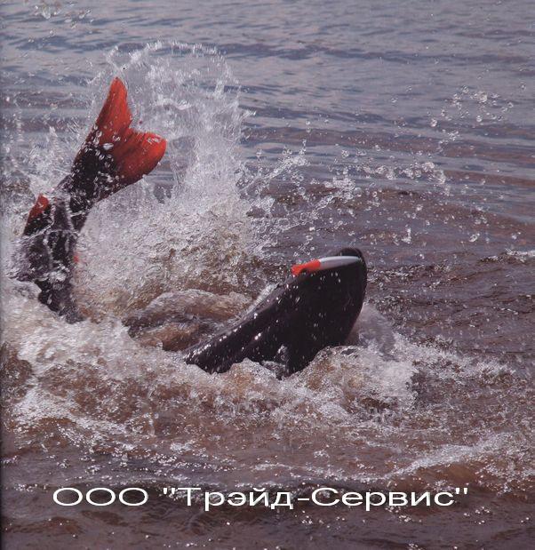 Рыбалка на сахалинского тайменя на реке Копи
