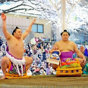 Пятнадцать бесплатных развлечений Токио