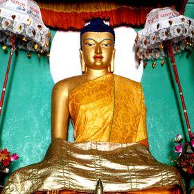 Основные истины буддизма в Таиланде, Индии, Вьетнаме