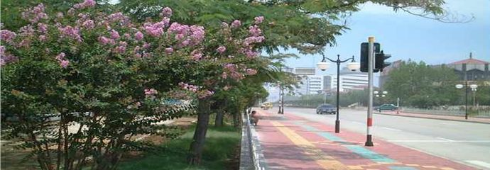 Туры в Бэйдайхэ через Хуньчунь 17 дней