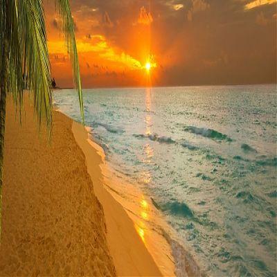 море и песчаный пляж