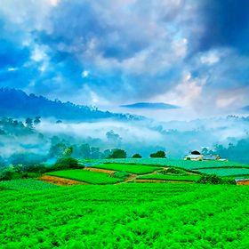 Туры во Вьетнам в июле