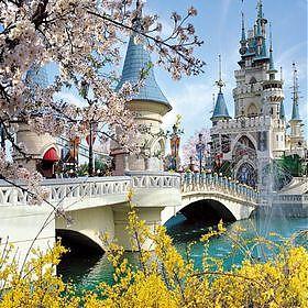 Тур на весенние каникулы в Сеул